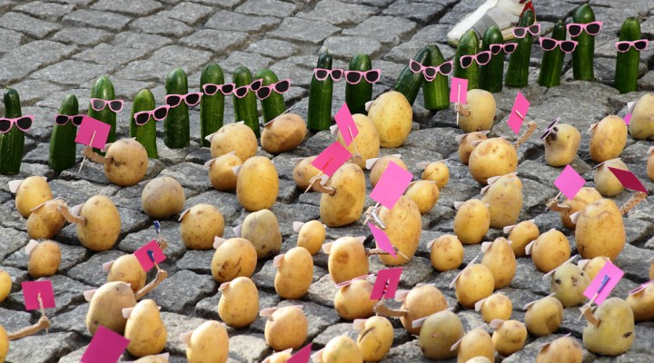 Potatoes in the street