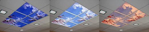 Il cielo in ufficio