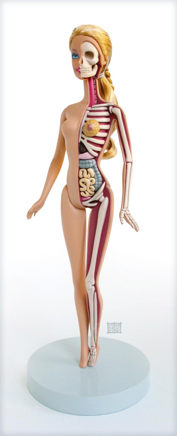 Anatomia di una Barbie